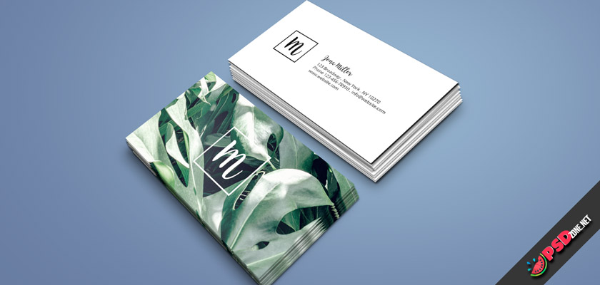 Monstera Leaf Business Card free