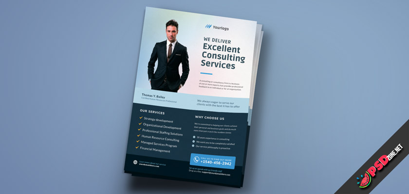 Consulting Services flyer free